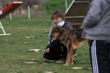 Education canine - Ecole Canine du Luberon
